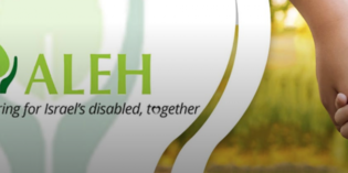 Support ALEH – Special Chanukah Fundraising Drive
