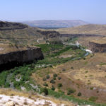 For Tu Bshvat – Centrality of Land of Israel from COJS