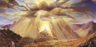 Shabbat Hoody Happenings and Rav Alex Israel on the Parsha